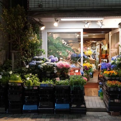 night florist